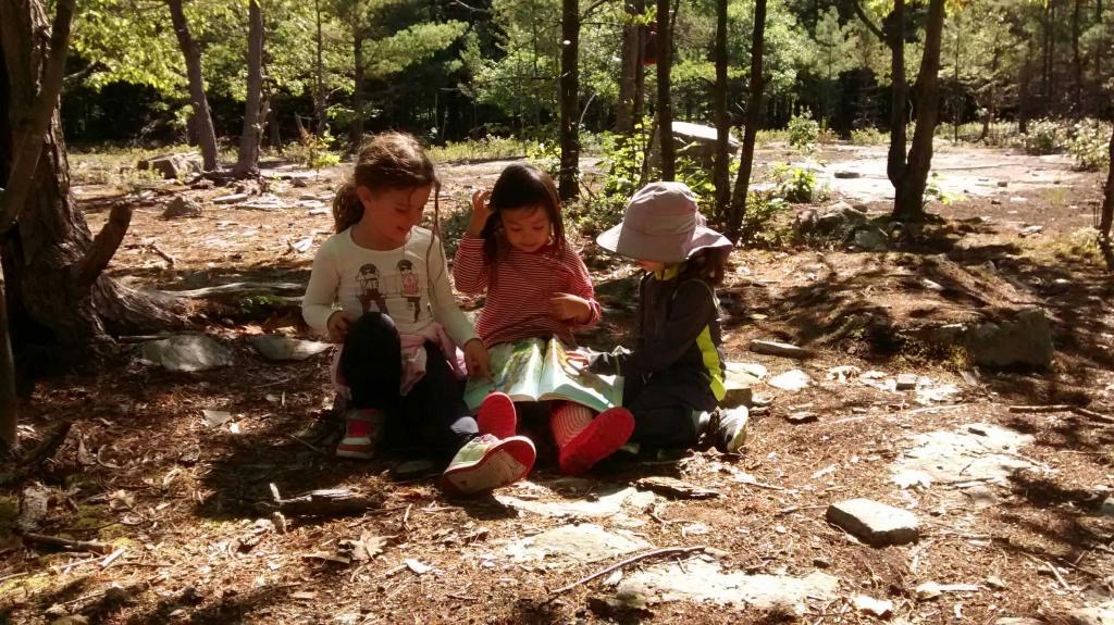 kids reading in forest