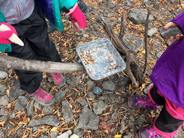 kids collecting items in forest