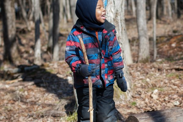 A boy stands on top of a log with a long stick in hand