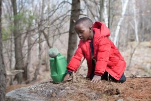 A boy kneels on a rock in the forest beside a watering can