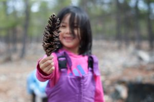 A girl holds up a large pinecone