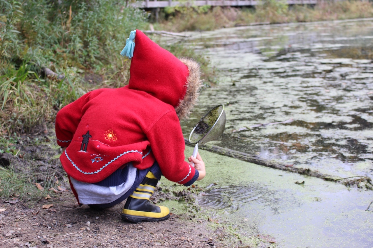 A child crouches in front of a mossy pond and looks into a strainer