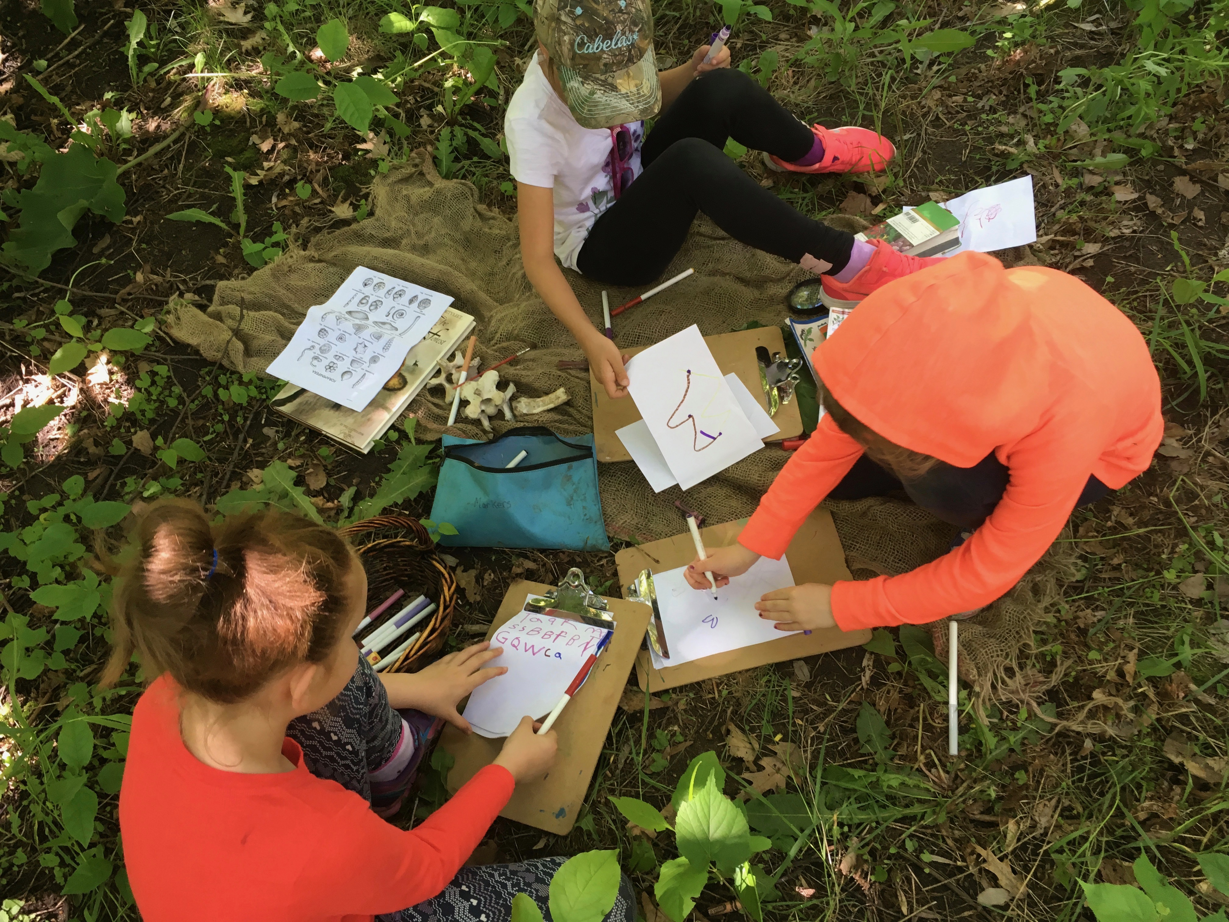 Literacy emerging on the land