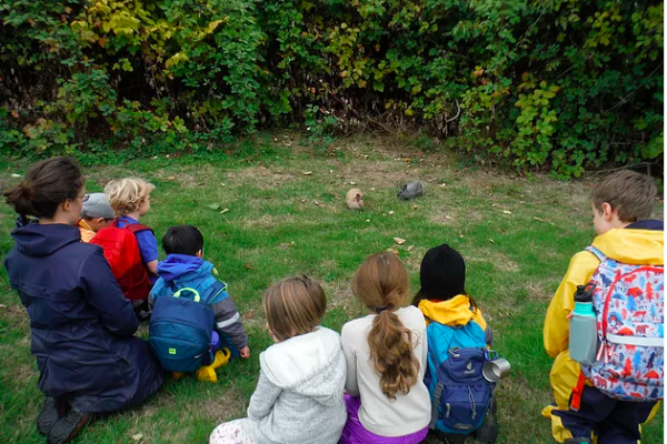 A group of children sit on a patch of grass watching two rabbits
