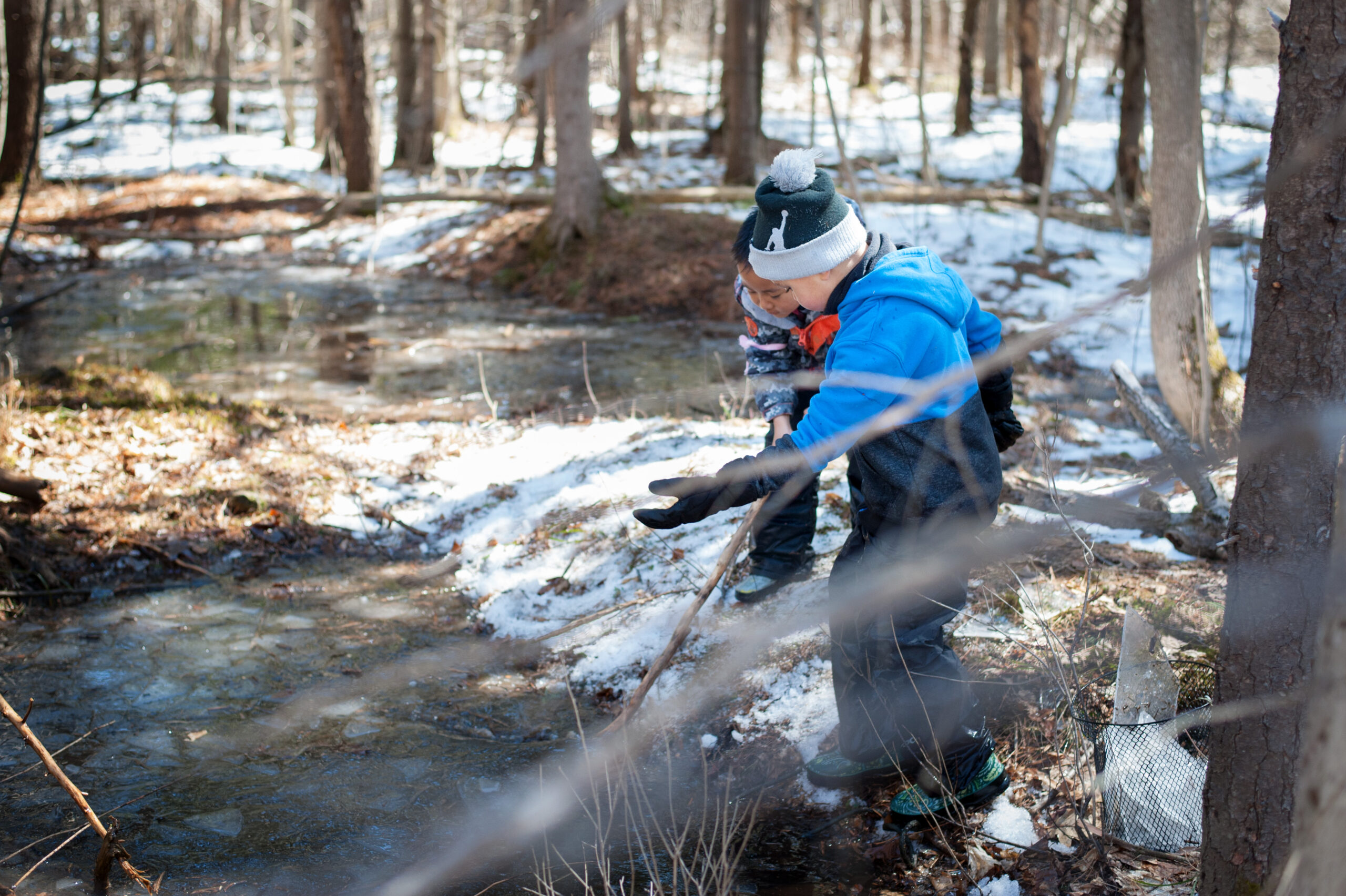 Two boys lean over a frozen pond in a forest during spring