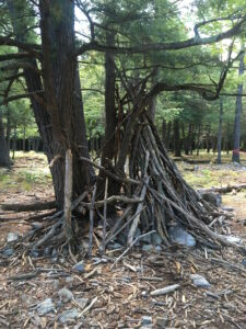 Large tree branches and sticks leaning against one another to make a tent structure