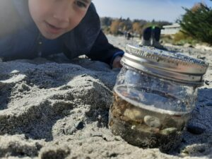 A boy lays down on the beach with his stomach on the sand. He looks at a jar filled with treasures found on the beach.