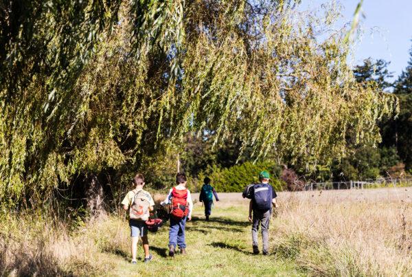 Four children walk through a grassy field on a sunny day