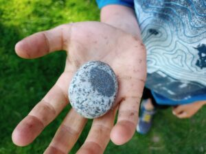 A hand lifts up a small, round rock with light and dark grey colouring.
